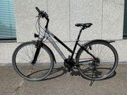 Schickes sportives Trekking-Fahrrad