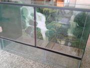 Glas Terrarium 80cm x 40cm