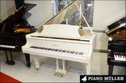 Klaviere und Flügel bis zu