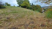 Gartengrundstück im Nord-Schwarzwald zu verkaufen