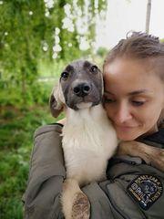 Chicca - hübsches Hundemädchen auf Körbhensuche -