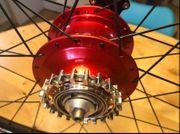 Rohloff Highend-Carbon Laufradsatz Gates neuwertig