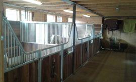 Pferdeboxen, Stellplätze - 3 Stellplätze zu vergeben