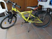 Calvin Fahrrad 20 Zoll Kinderfahrrad