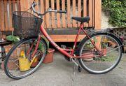 Fahrrad Ragazzi renovierungsbedürtig