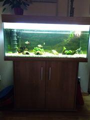 180 Liter Aquarium von EHEIM