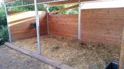 Offenstall für 2 Pferde frei