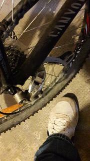 Canyon bike nur heute