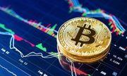 Bitcoin Münze -Gold- Sammlung vergoldete