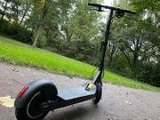 Mini Scooter EGRET TEN - Elektroroller
