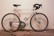 Fahrrad Rennrad Peugeot Cologne 1989