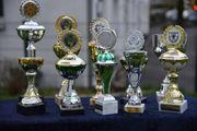10 verschiedene Pokale verschiedene Größen