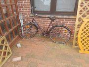 3 Bastler Fahrräder an Selbstabholer