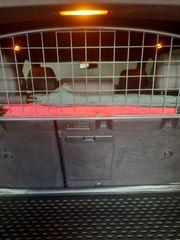 Porsche Cayenne Hunde Abtrenngitter
