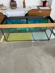 Juwel Aquarium mit Unterschrank 150
