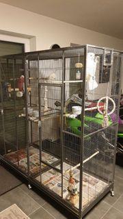 Vogelvoliere Käfig für Papageien top