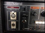 ROLAND CHORUS ECHO RE-501 Perfekter