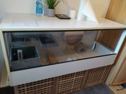 Hamster-Terrarium mit Zubehör sehr gut