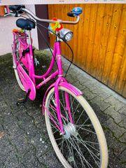 Hollandrad Pink 28