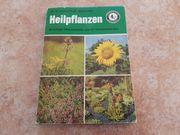 Heilpflanzen von Dr Grusche und