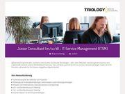 Junior Consultant m w d -