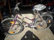 Enik Damen Fahrrad 28 Neu
