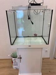 Meerwasseraquarium Juwel und komplette Technik