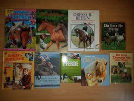 Schnäppchenpreis haufenweise sehr schöne Pferde: Kleinanzeigen aus Bad Köstritz - Rubrik Kinder- und Jugendliteratur