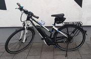 E-Bike Pedelec Pegasus Premio E10