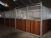 55 Boxenfront Gentleman Pferdebox Pferdestall