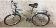 Chio Damen oder Herren fahrrad
