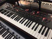 Synthesizer Prophet 12