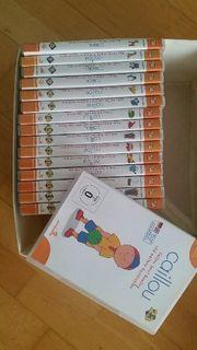 Caillou DVD S