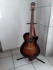 Akkustikgitarre AEG10EVS1202 Ibanez