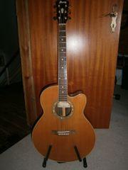 Ibanez Gitarre AEL 50