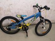 Kinder Fahrrad Dirk Mountainbike 20