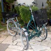 Dreirad - 3-Rad - Erwachsene - Pfau-T-Bike BENE - Doppelräder
