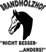 Helfer für Pferdestall in Freiberg