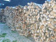 Brennholz Hart- und Weichholz auch