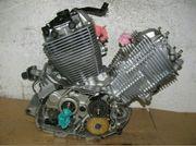 Yamaha virago 535 Motor teile