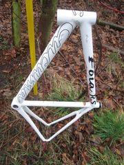 Rennrad Carbon Rahmen RH 56