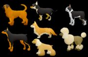 Tierbetreuung - Tiersitting Löstertal