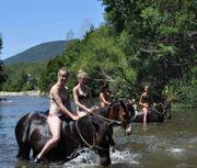 Nebenjob für eine Reiterin-Pferdemädel