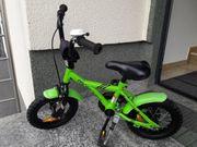 Guterhaltenes gebrauchtes Prometheus Bike 12