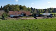 Wohn u Hofgemeinschaft Pferdehof Oldie