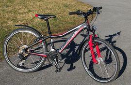 Kinder Fahrräder in Alberschwende gebraucht kaufen