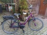 E Bike Pedelec von Pegasus