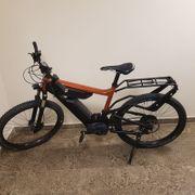 Riese Müller Fahrrad e-Bike DELITE