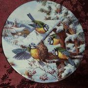 Bradex Sammelteller Mittagsschmaus der Blaumeisen