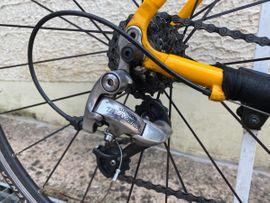 Mountain-Bikes, BMX-Räder, Rennräder - Rennrad mit Carbongabel 28